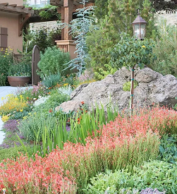 别墅庭院:如何构建岩石花园?