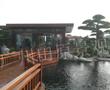南头碧桂园别墅景观